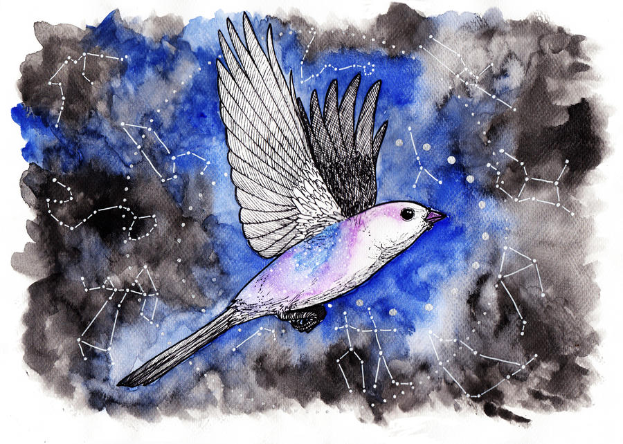 Zodiacnight by ShiroiiTsubasa