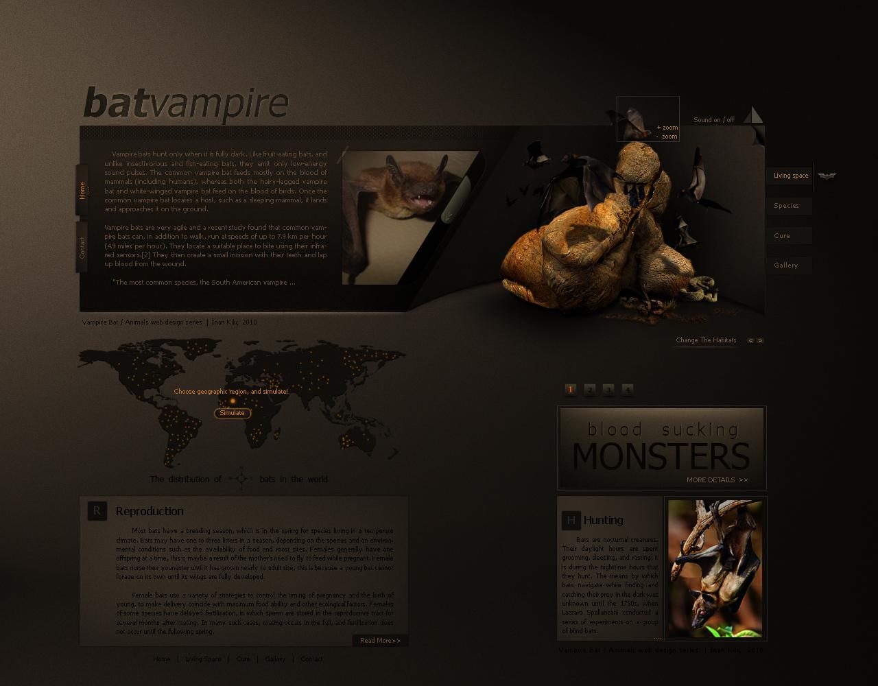 Animals web design series/BAT