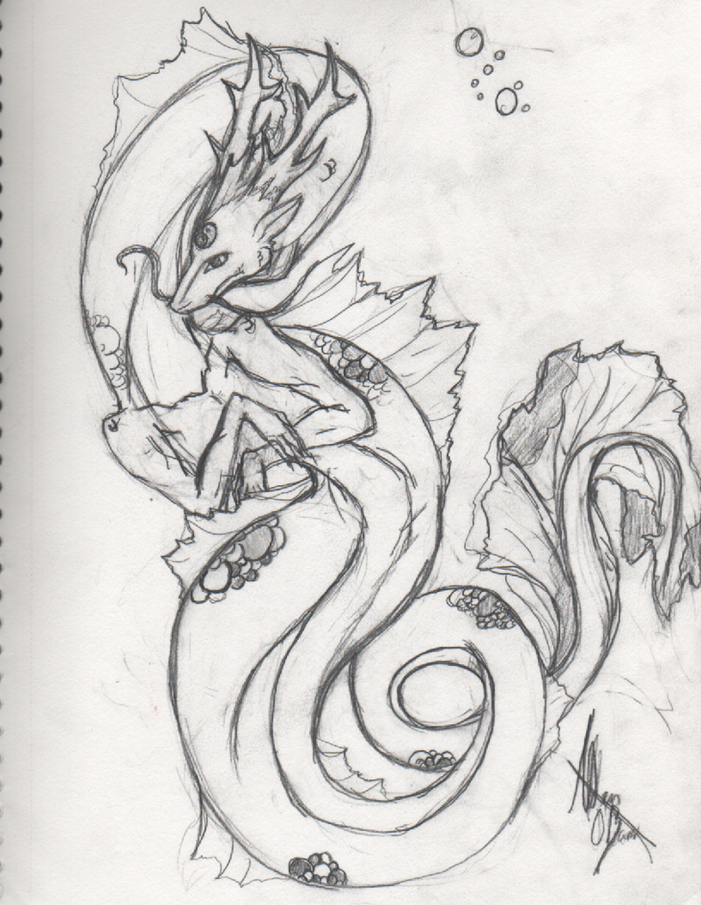 Koi Dragon Sketch Koi Dragon Sketch by Okamichu