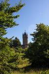 Babelsberg Park 02