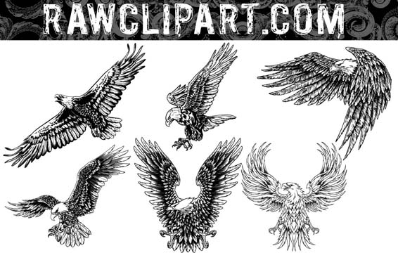 eagle vector clipart free download - photo #35