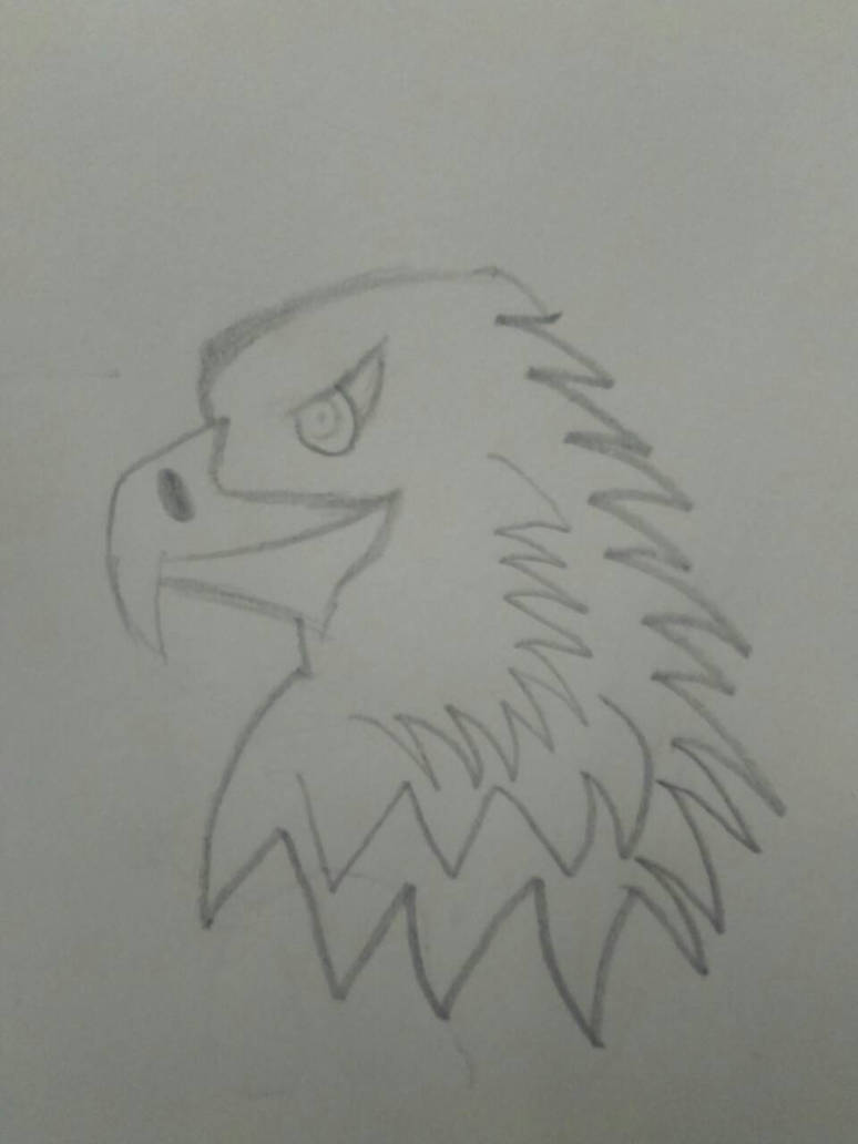 simple eagle by karim-wtf