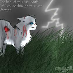 First Battle as a Warrior by AmusedMilk