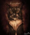 Halloween Style Portrait for Our Tuxedo Cat Friend