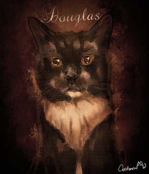 Halloween Style Portrait for Our Tuxedo Cat Friend