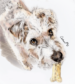Watercolor Puppy Portrait for a friend's cute Dog