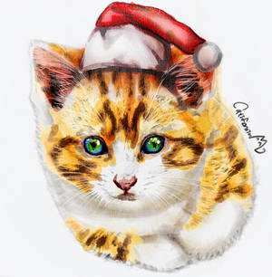Christmas Style Portrait for a Kitten friend