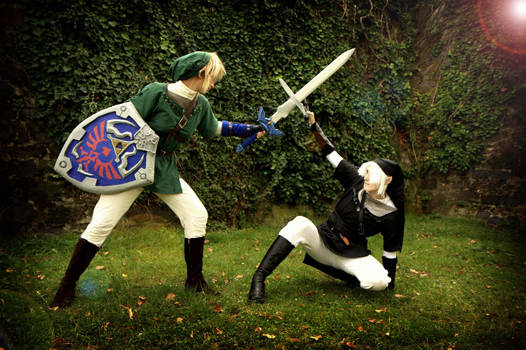 Link Cosplay-fighting the Dark