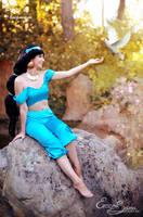 A dream of freedom - Princess Jasmine Cosplay by Eressea-sama