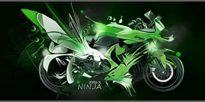 Kawasaki Ninja Tag by Syndrome-X