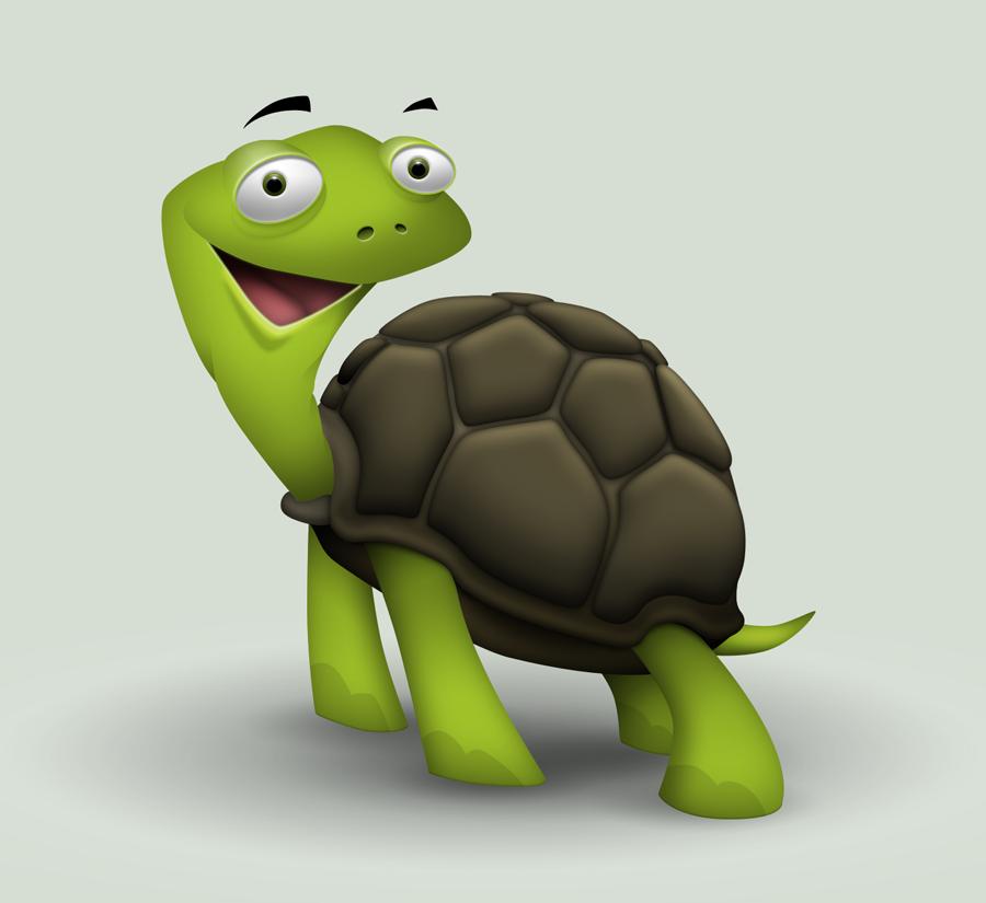 Tortoise by hbielen