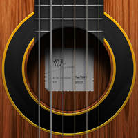 Guitar icon by hbielen