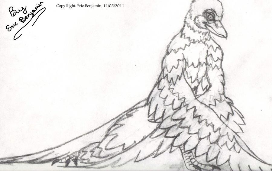 avian human hybrid by asteroid-001 on DeviantArt