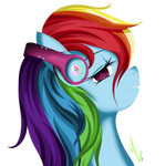 Rainbows's Headphones