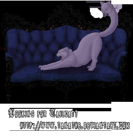 tailcat's Profile Picture