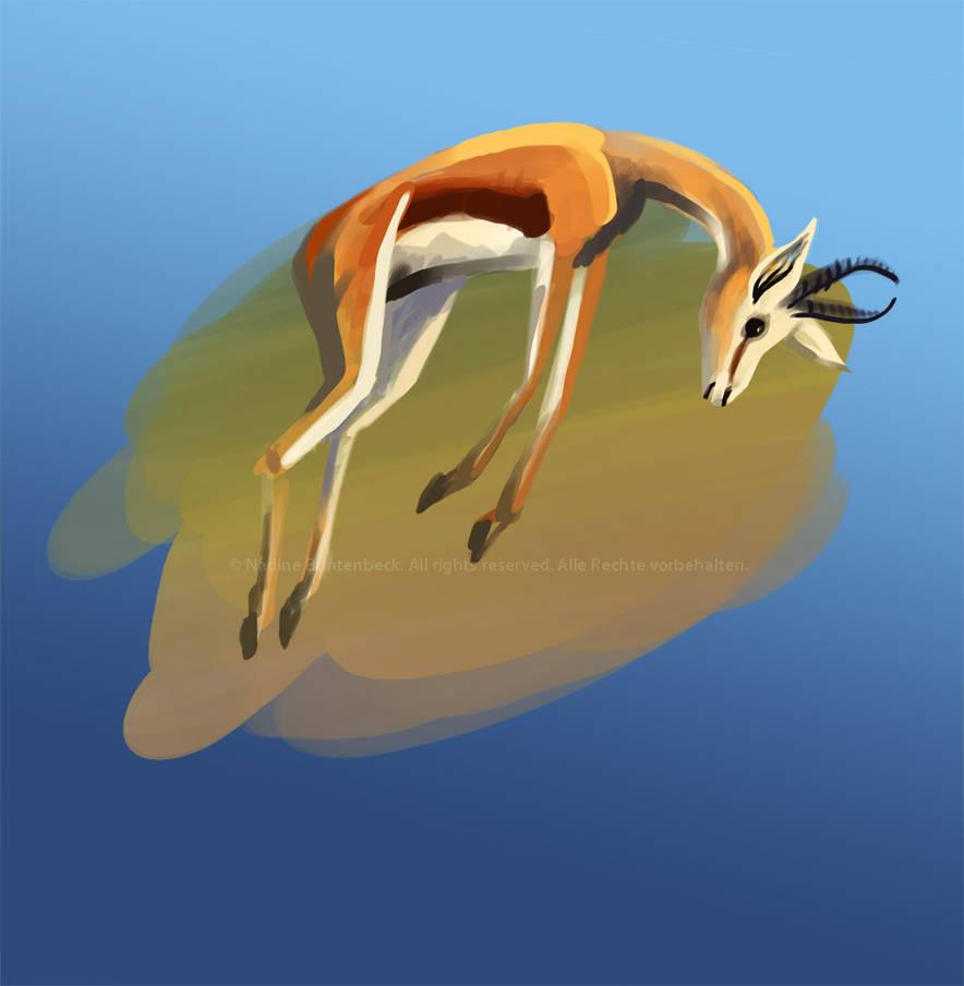 Gazelle by ladameblanche