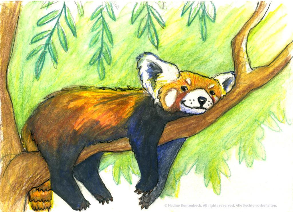 Red Panda / Firefox by ladameblanche