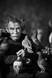 The man who talks to pigeons