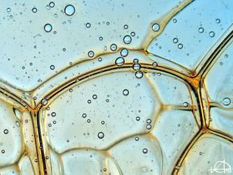bubbles life 4 by grezelle