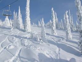 Snow Stock 002 by SnaffledChestnut