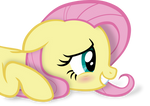 Angel does not approve [Fluttershy only]