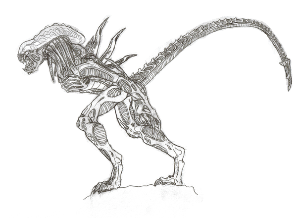 Alien From Avp Coloring Pages Coloring Pages