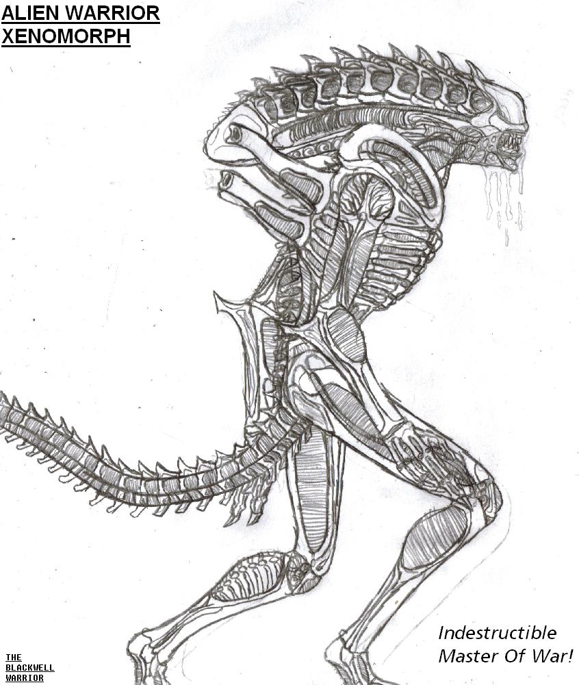 Indestructible master of war by titanosaur on deviantart Xenomorph coloring book