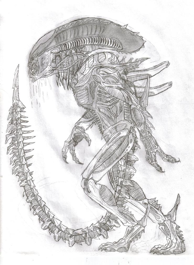 Predalien Of War by TITANOSAUR on deviantART