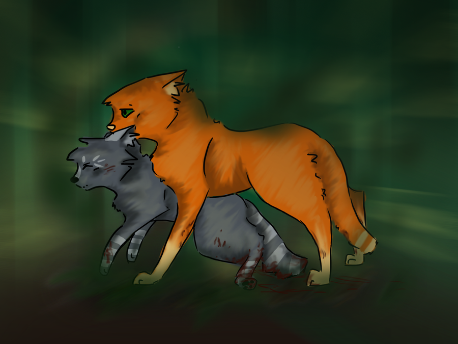 Cinderpaw and Fireheart - Crash by AlouncaraFireheart And Cinderpaw