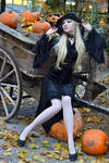Witch Stock