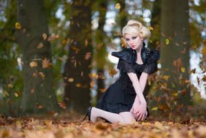 Colours of Autumn - Stock