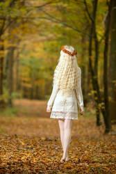 Autumn Dream - Stock