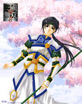 Dynasty Warriors: Zhao Yun