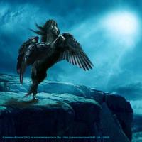 Blue-Black Pegasus by CarolineArtworks