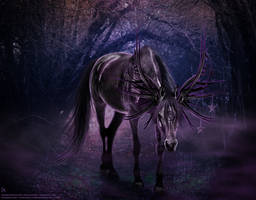 Purple Witch by CarolineArtworks