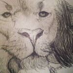 Lion by TheStupidFox