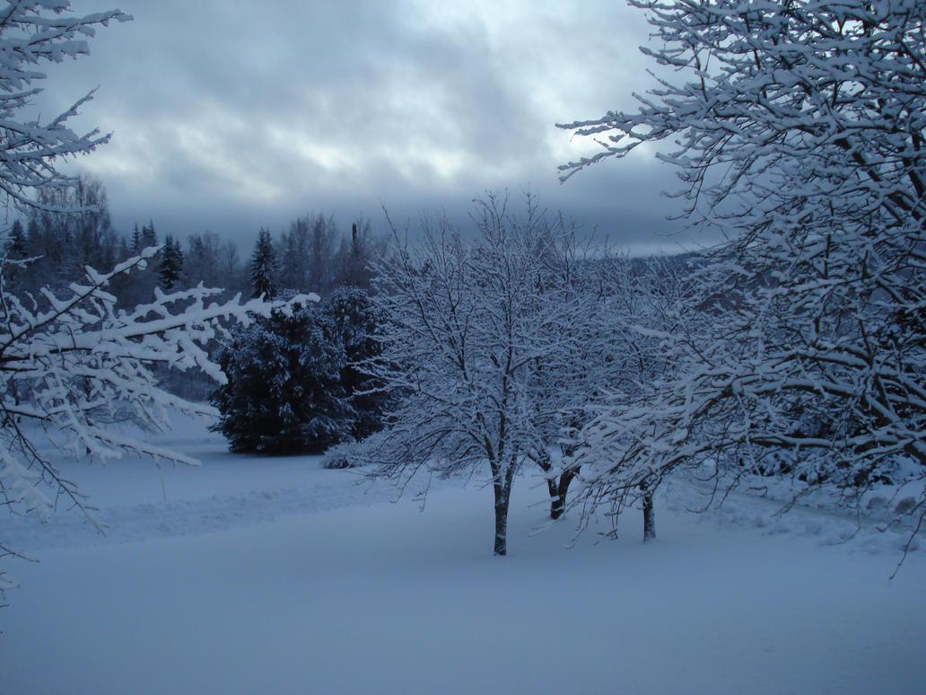 Winter landscape by Makkex