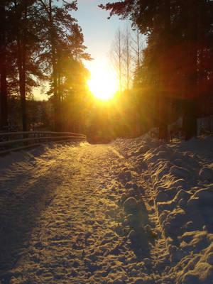 Sun, by Makkex