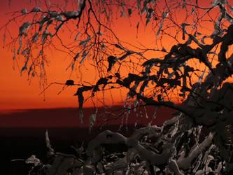 Afterglow. by Makkex