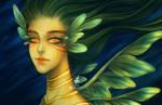 Seadragon Mermaid