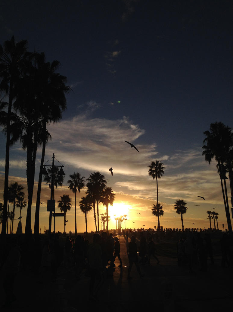 Venice Beach 2014 by PiggtailGirl