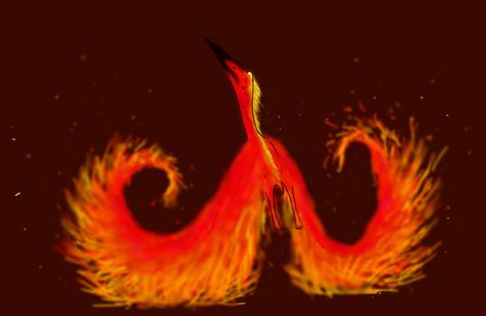 Phoenix Azhdarchid