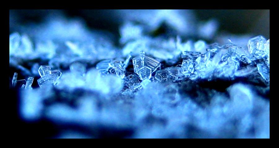 Icy Shadow by FramedByNature