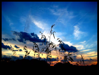 Harvest Sunset by FramedByNature
