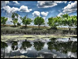 The Springs II by FramedByNature