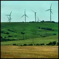 Energy Fields by FramedByNature