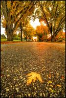 Autumn in Boys Town II by FramedByNature