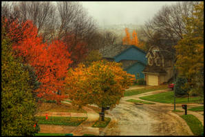 Autumn Streets by FramedByNature
