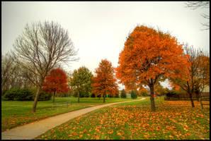 Solemn Autumn by FramedByNature