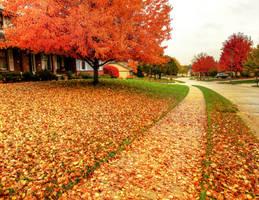 Autumn's Path by FramedByNature